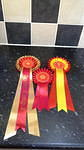 GREAT YARMOUTH &DISTRICT CANINE SOCIETY SHOW 24/9/2017.